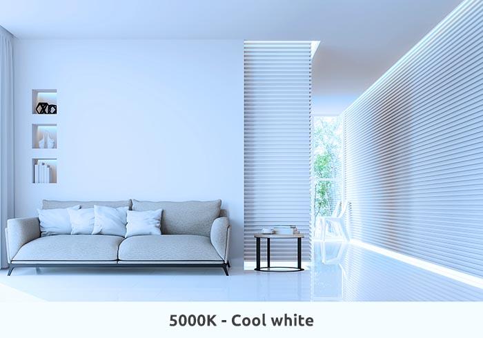 5000K Cool White